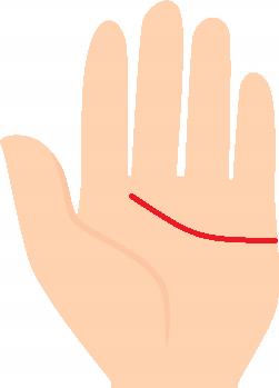 感情線が人差し指と中指の間に向かって伸びている