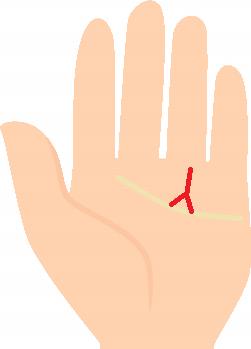 金運線の先が二股に分かれている